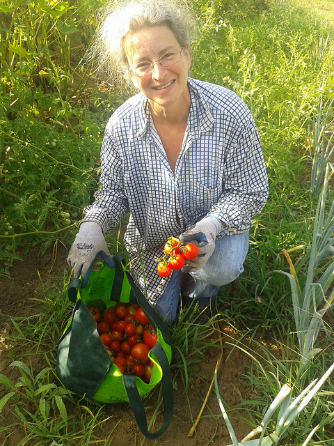 Gretchen with tomatoes from one day