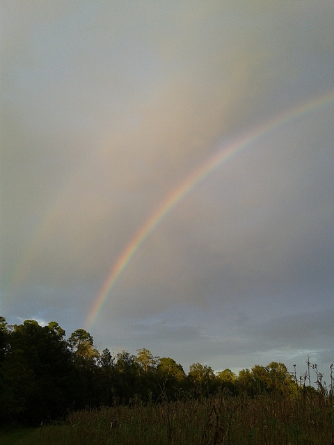 Portrait of two rainbows
