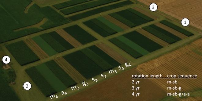 Marsden Farm aerial